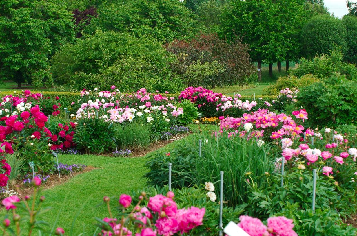 Tachenhausen Garten